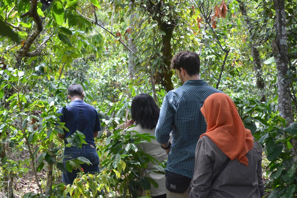 Andreas Elfert hat sich in Indonesien alle Anbaugebiete selbst angeschaut.