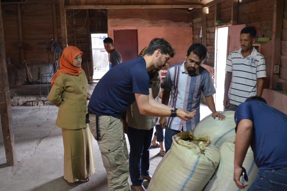 Die geernteten Kaffeebohnen lagern die indonesische Kaffeebauern in ihrem Kooperativen-Haus. Hier schaut sich Andreas die Qualität der grünen Rohkaffeebohnen an.